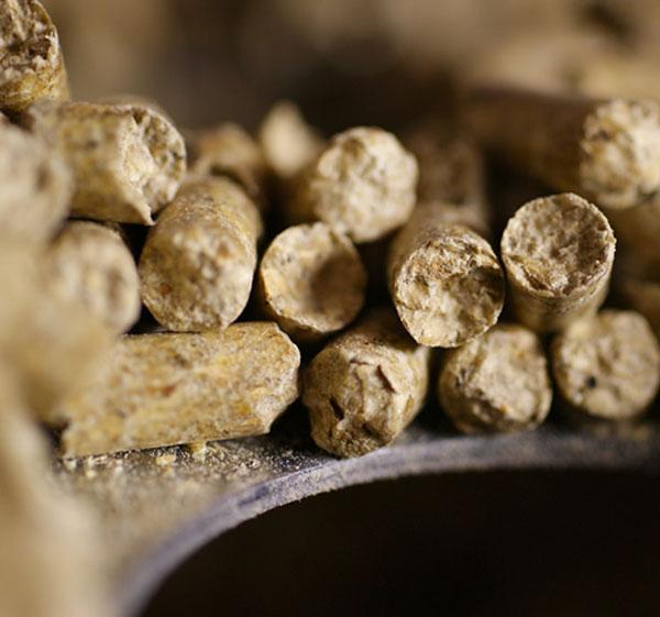 Granulés de bois ou pellets